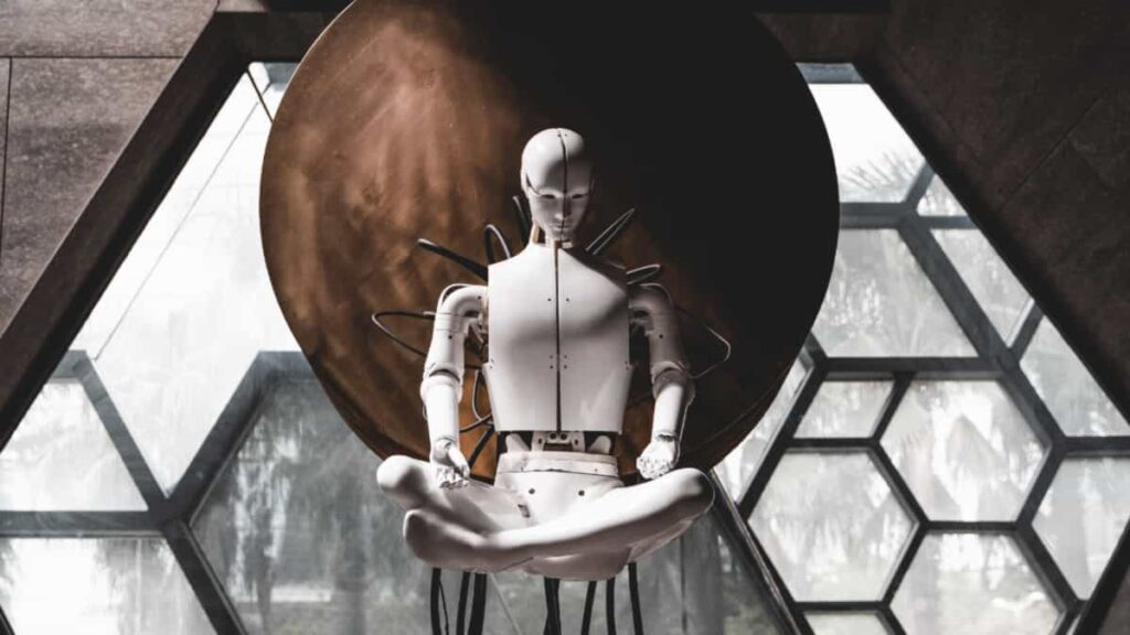 robot social, que puede hacer por nosotros, que puede hacer, innovacion robotica